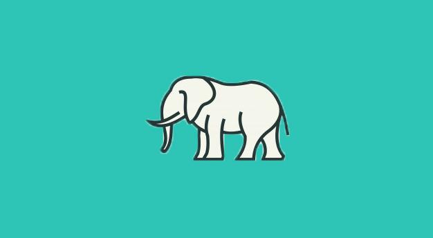 فیل سفید دنیای فروش